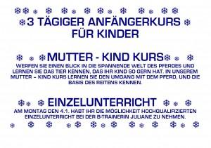 Weihnachtsprogramm 2012_2