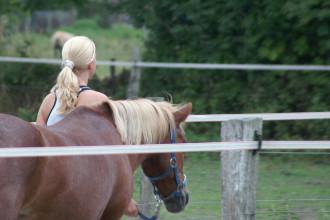 Blondinen bevorzugt_1037089746_l
