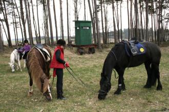 kurzes Auftanken für Pferde und Reiter_4628818397_l
