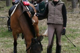kurzes Auftanken für Pferde und Reiter_4629036115_l