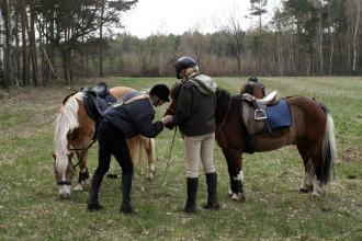 kurzes Auftanken für Pferde und Reiter_4629037407_l