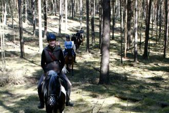 lustiges Wegesuchen im Wald_4628963299_l